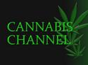 Cannabis Channel