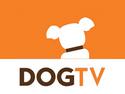 DOGTV Channel