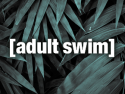 adult swim on roku