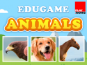 Animals EduGame