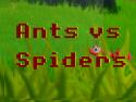 Ants vs. Spiders