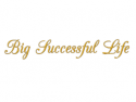 Big Successful Life