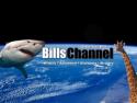 Bills Channel