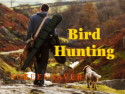 Bird Hunting Screensaver