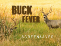 Buck Fever Screensaver