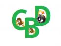 CBD News