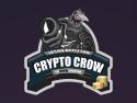 Crypto Crow - ICO investing