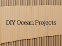 DIY Ocean Projects