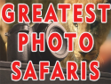Greatest Photo Safaris