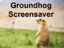 Groundhog Screensaver