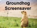 Groundhog Screensaver