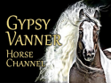 Gypsy Vanner Horse Channel