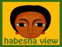 habesha view