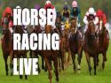 Horse Racing Live