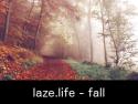 laze.life - fall