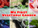 My First Vegetable Garden