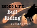 Rodeo Life - Bull Riding