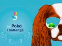 The Poko Challenge