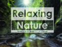 The Relaxing Nature
