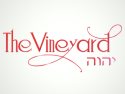 The Vineyard jc