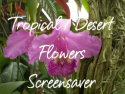 Tropical and Desert Flowers