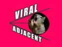 Viral Adjacent