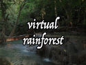 Virtual Rainforest