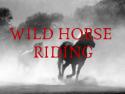 Wild Horse Riding