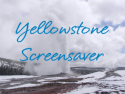 Yellowstone Screensaver