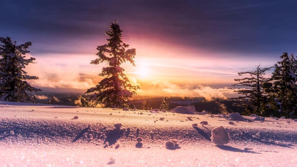 Snowy Winter Screensaver Roku Guide