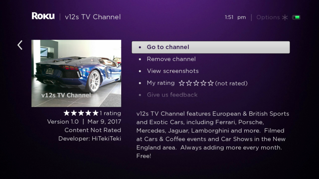V12s TV Channel Roku Guide