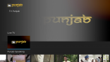 TV Punjab on Roku