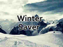 Winter Saver